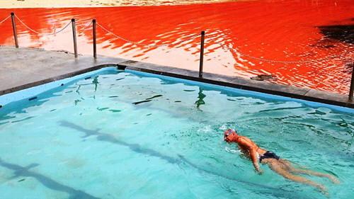 호주 핏빛바다, 수영하는 남자