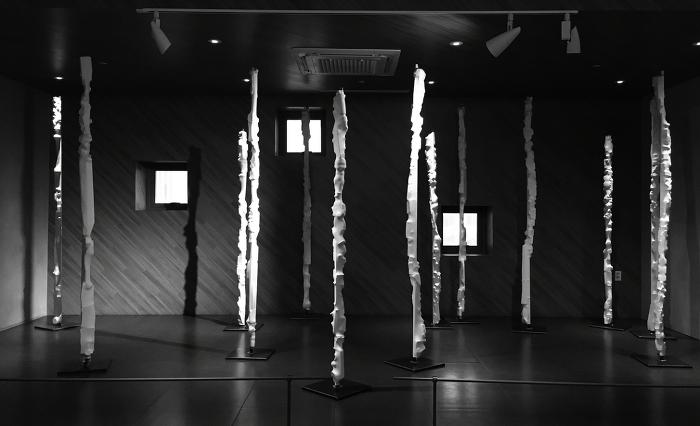 사이아트스페이스, 권순앙+김태은, 판이즘 (Phanism)展