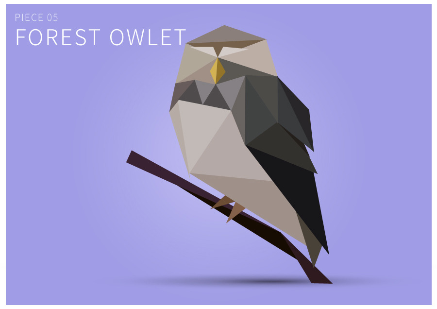 Piece 05 Forest owlet