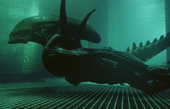 사진: 끈질긴 생명력과 적응력을 보여온 에일리언이 이번에는 물 속에서 잠수를 하는 능력도 보여주었다. 사실 에이리언은 인간의 사악한 면을 빗댄 존쟁이다. [에이리언4와 시리즈 결말의 해석]
