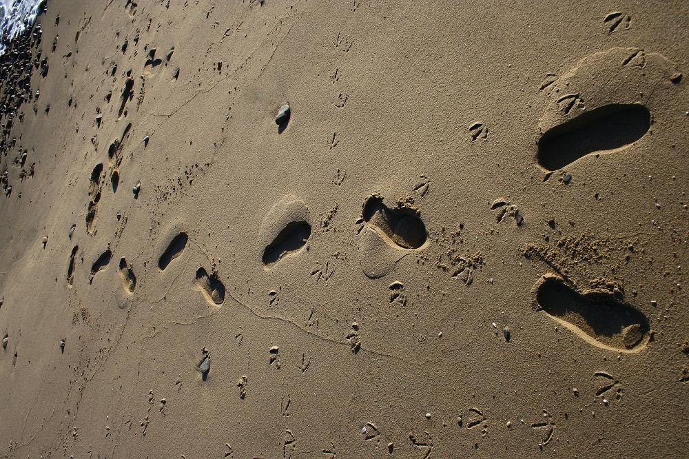 바이크로 달리자 - 3일차 ① :: 바다 그리고 바다 : 21432E485145AAA827854E