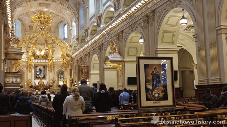 노트르담 가톨릭 성당 미사