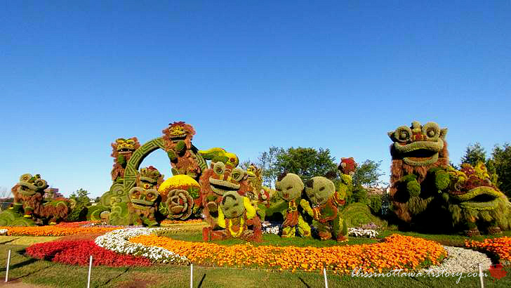 중국 상하이 사자춤 식물 모자이크입니다