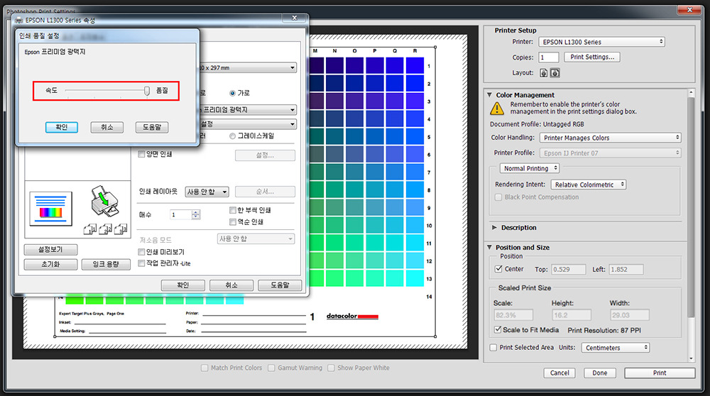 Epson L1300 설정_03