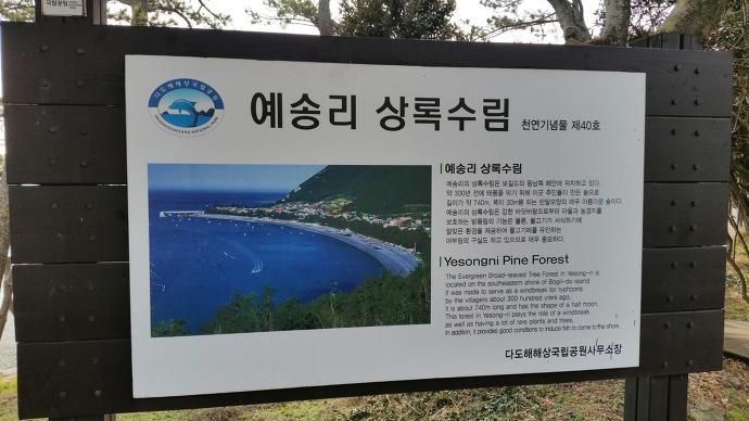 전남 보길도 예송리,상록수림, 전남 보길도 가볼만한곳
