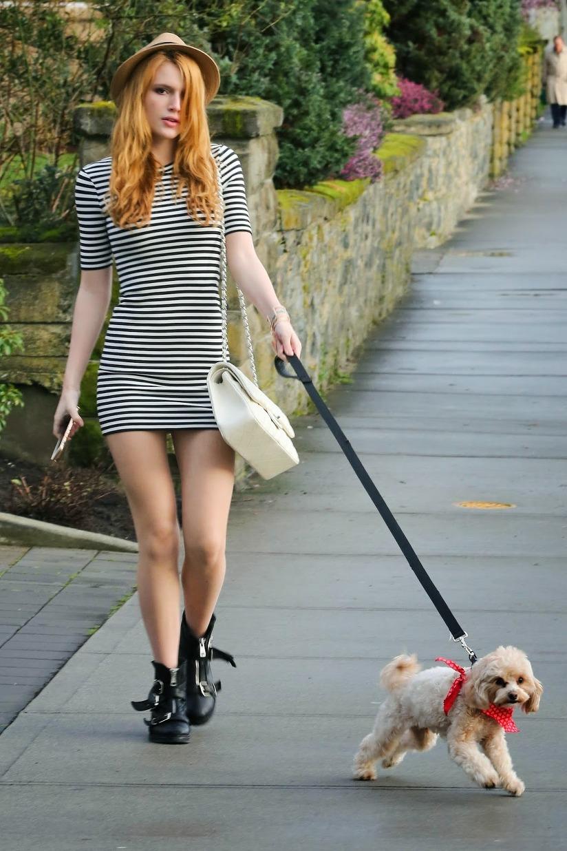 Gogo Walking Dog Uk