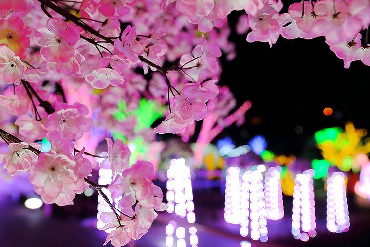 야간데이트 장소 추천 이색빛축제 야간 데이트코스