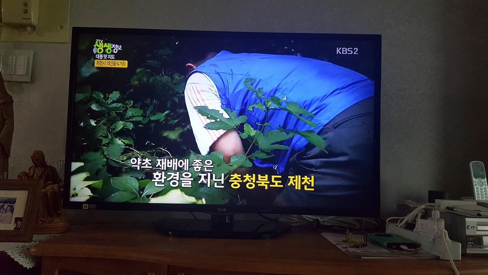 [제천 여행]생생정보통 소개 제천맛집