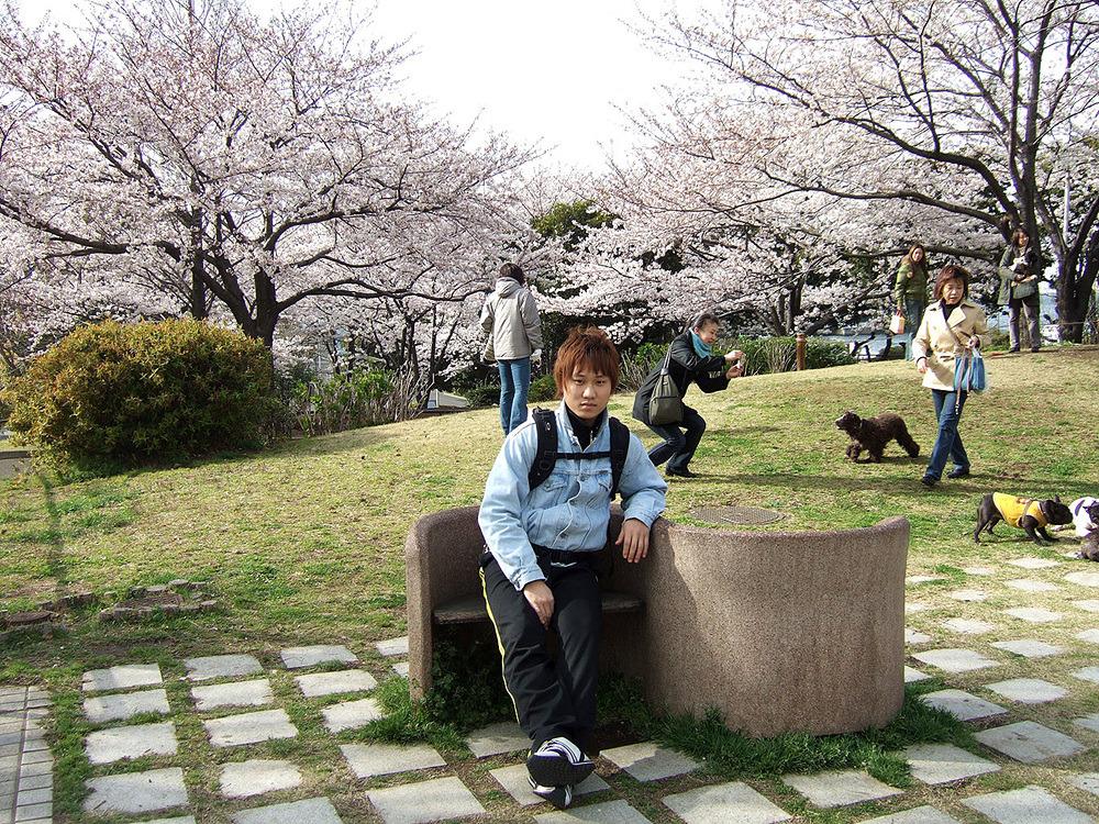 일본여행 - 다음 이야기 : 2419004C513CB8BA15A693