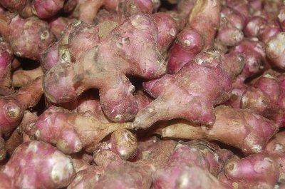 돼지감자효능│당뇨에좋은음식