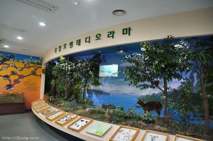 동구청,대청호오백리길,대전 랜드마크,대전 조명,대전 볼거리,