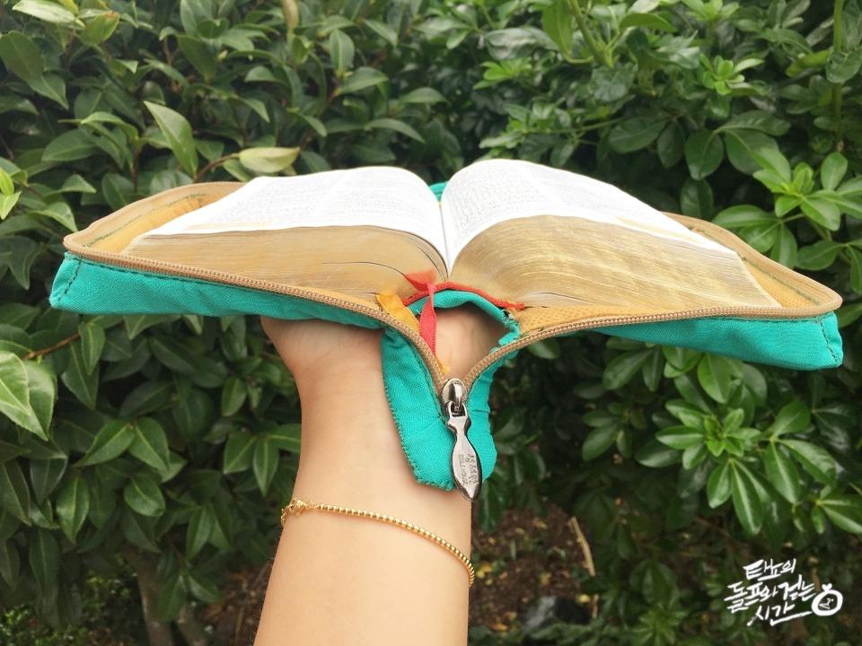 성경책리폼 책리폼 패브릭천 성경리폼 성경책커버씌우기 바느질