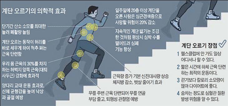 계단 걷기 효과