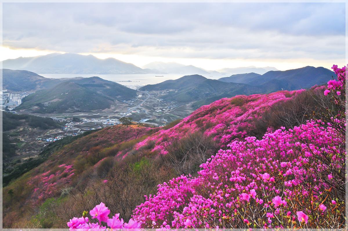 영취산에서(2013.4.7)