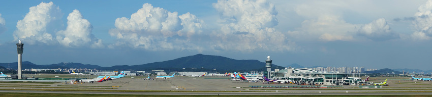 Panorama of ICN