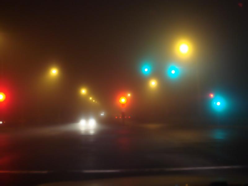 【相会雾的夜晚】 - 空山鸟语 - 月滿江南