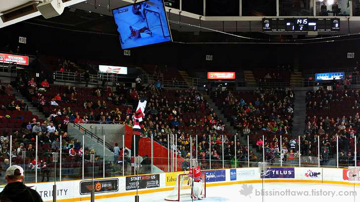 캐나다 스포츠 응원 문화 입니다