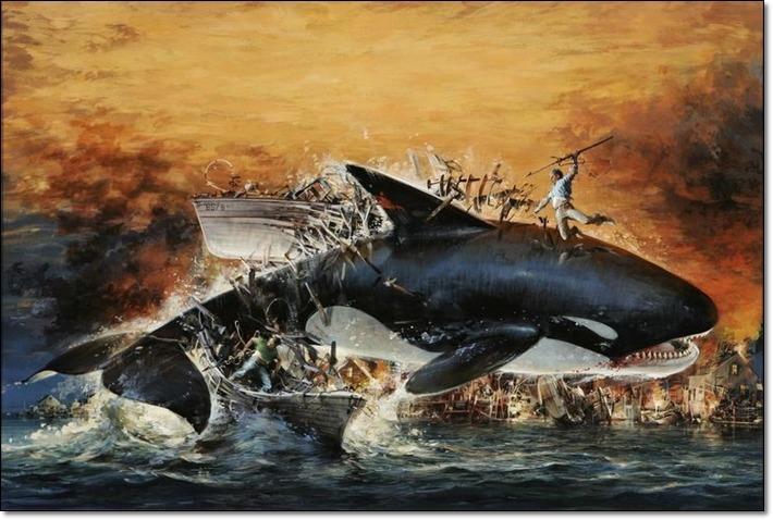백상어의 간(肝)만 쏙 빼먹는 바다의 왕자 범고래 등장