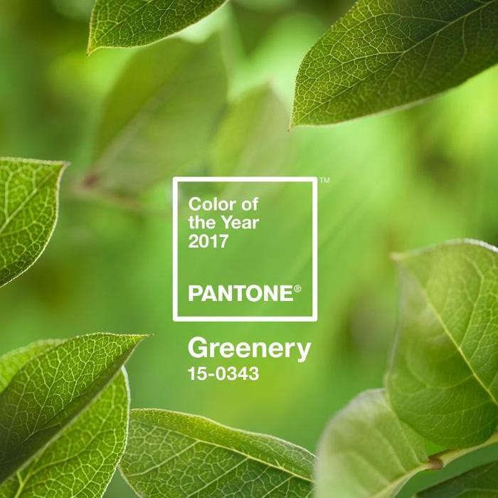 팬톤 2017 올해의 컬러
