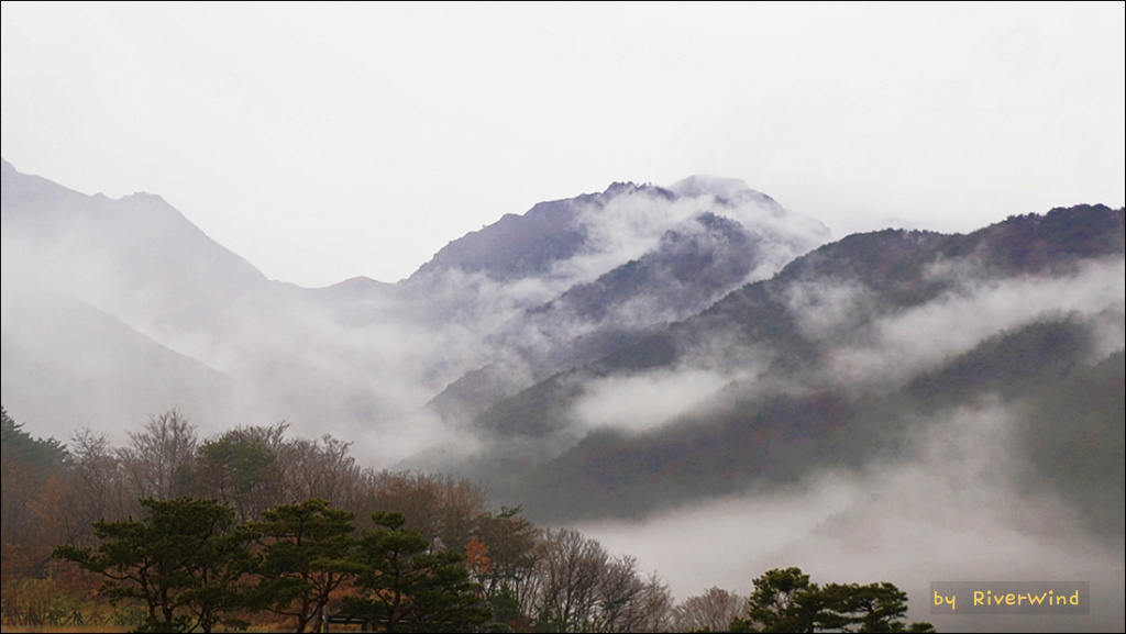 겨울비 내리는 간월산
