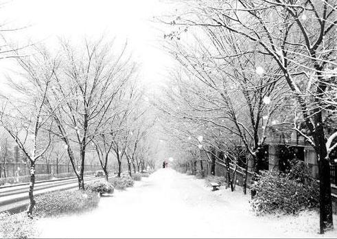 겨울이 오네요
