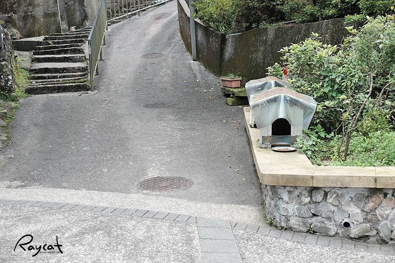 허우통 고양이 마을 고양이집