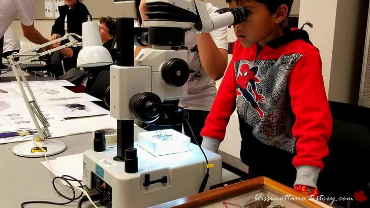 현미경 관찰입니다