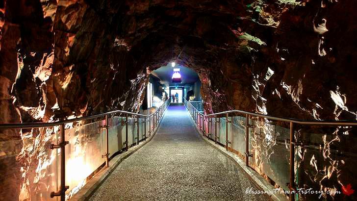 본관 이동 터널입니다