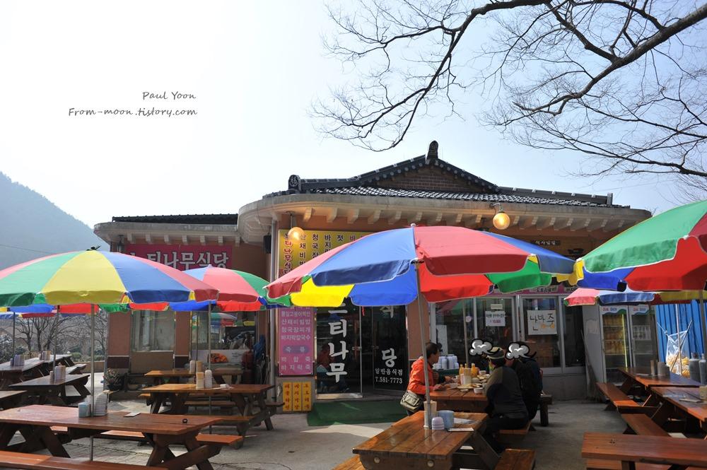 [부안 식당 / 내소사 식당] 부안 내소사 느티나무 식당에서 먹은 산채비빔밥과 해물파전