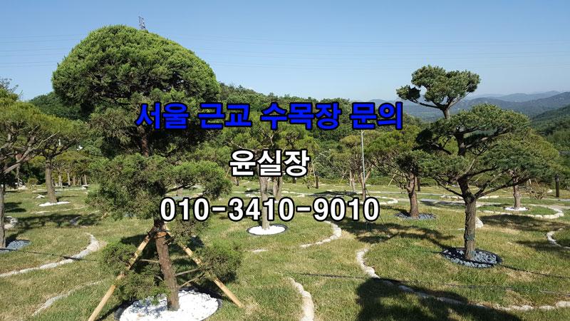 서울근처 가족수목장 추천