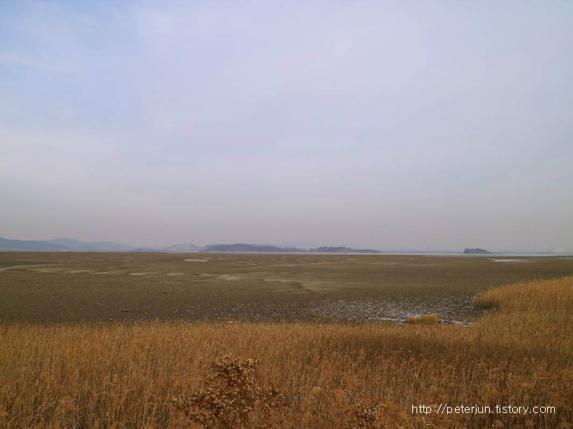 갯벌 풍경