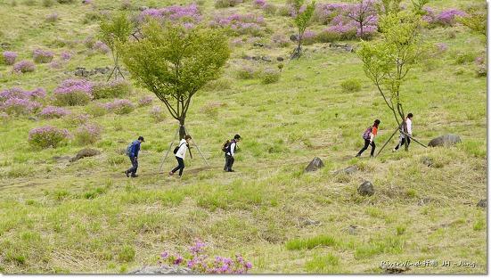 트레킹(Trekking)하는 사람들.