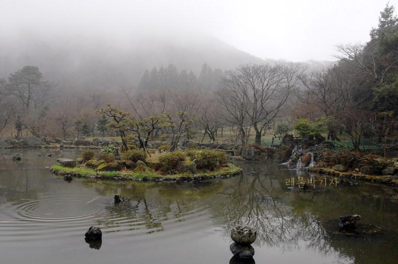 절물자연휴양림_연못2